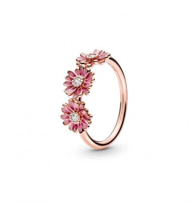טבעת רוז שלישיית חרציות ורודה
